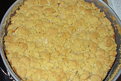 Apfel - Streuselkuchen mit Pudding 60