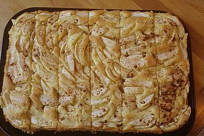 Apfelkuchen Großmutters Art 15