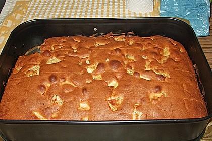 Apfelkuchen Großmutters Art 40