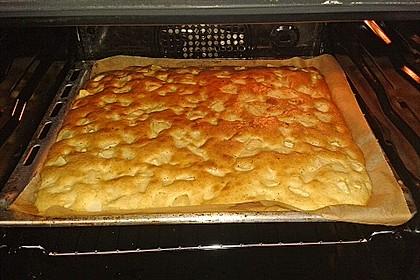 Apfelkuchen Großmutters Art 25