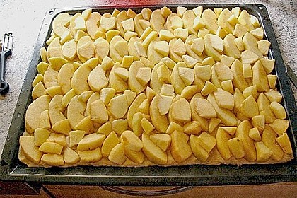 Apfel - Streuselkuchen vom Blech 38