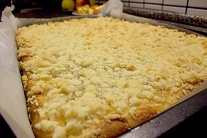 Apfel - Streuselkuchen vom Blech 19