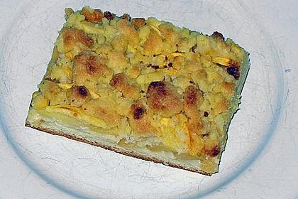 Apfel - Streuselkuchen vom Blech 13
