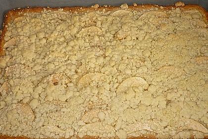 Apfel - Streuselkuchen vom Blech 27