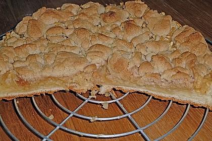 Apfel - Streuselkuchen vom Blech 9