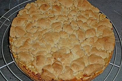 Apfel - Streuselkuchen vom Blech 10