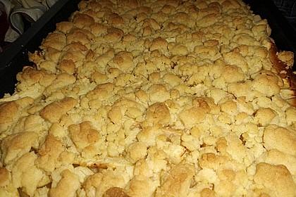 Apfel - Streuselkuchen vom Blech 29