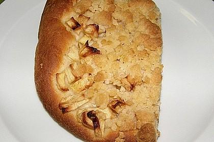 Apfel - Streuselkuchen vom Blech 28