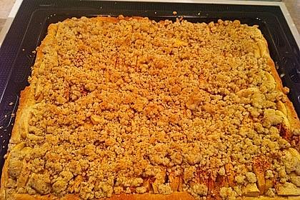 Apfel - Streuselkuchen vom Blech 26