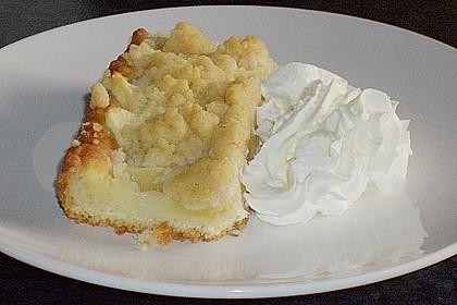 Apfel - Streuselkuchen vom Blech 5