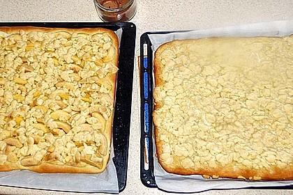 Apfel - Streuselkuchen vom Blech 25