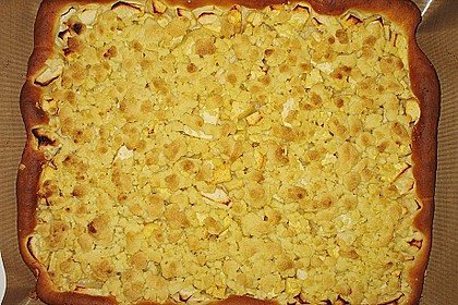 Apfel - Streuselkuchen vom Blech 22