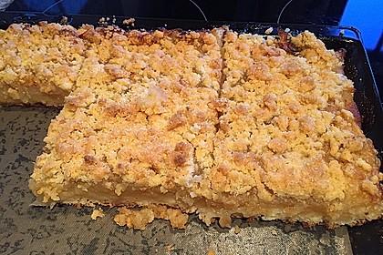 Apfel - Streuselkuchen vom Blech 15