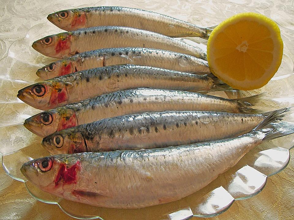 Gebackene kleine fische von schwalbe for Kleine fische