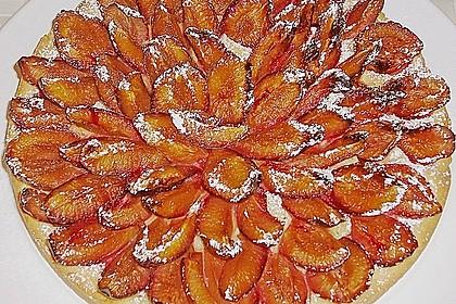 Pflaumenkuchen 26