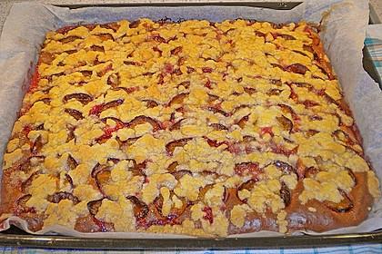 Pflaumenkuchen 8
