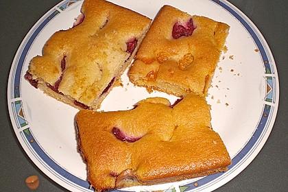 Pflaumenkuchen 36