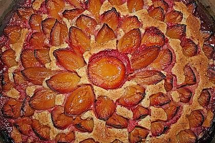 Pflaumenkuchen 23