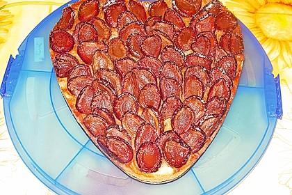 Pflaumenkuchen 21