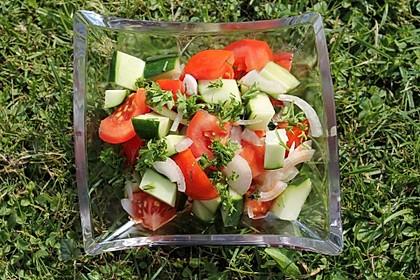Gurken - Tomatensalat 28
