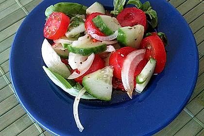 Gurken - Tomatensalat 16