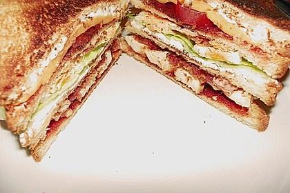 New York Club Sandwich 29