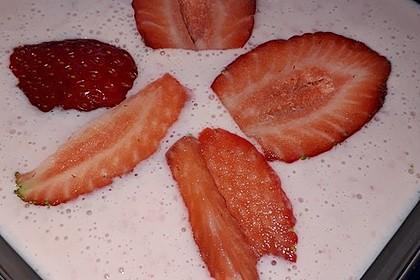 Erdbeerjoghurt  für das ganze Jahr 13