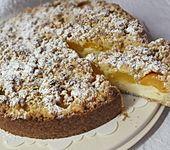 Käse - Aprikosen - Kuchen