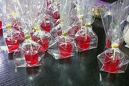 Jelly Shots 1