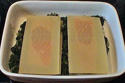 Lachs im Lasagneblatt 4