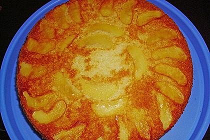 Apfelkuchen schnell und einfach 27