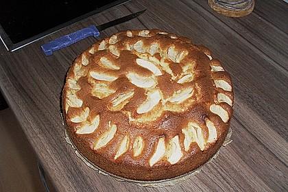 Apfelkuchen schnell und einfach 31