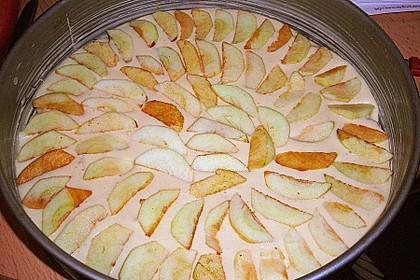 Apfelkuchen schnell und einfach 52