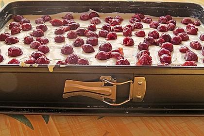 Einfacher Quarkkuchen ohne Boden 23