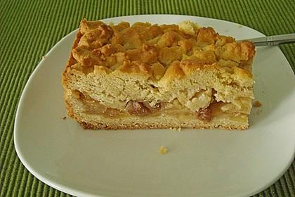 Apfel - Zimt - Krümelkuchen 4