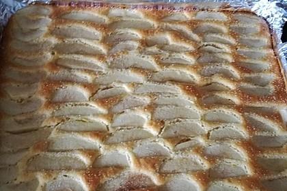 Apfelkuchen schnell und fein 83