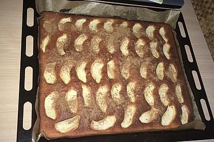Apfelkuchen schnell und fein 85
