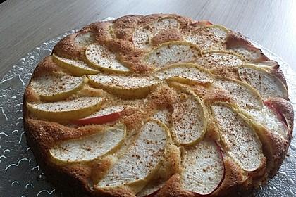 Apfelkuchen schnell und fein 84