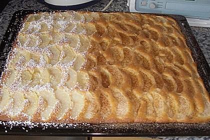 Apfelkuchen schnell und fein 150