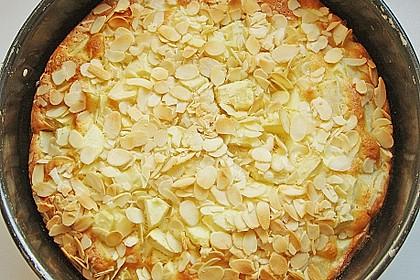 Apfelkuchen schnell und fein 76