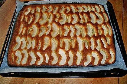 Apfelkuchen schnell und fein 149