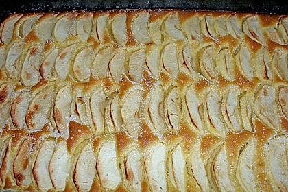 Apfelkuchen schnell und fein 43