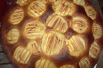 Apfelkuchen schnell und fein 65