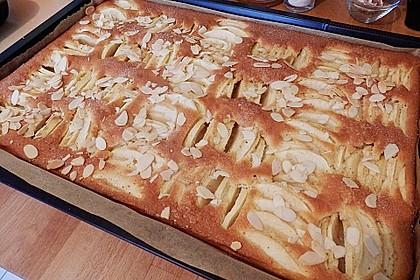 Apfelkuchen schnell und fein 128