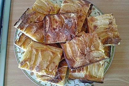 Apfelkuchen schnell und fein 49