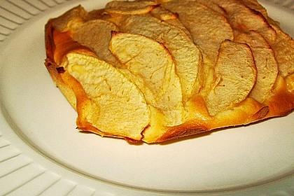 Apfelkuchen schnell und fein 48