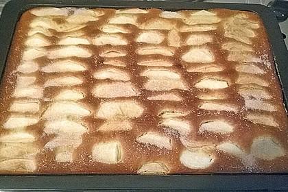 Apfelkuchen schnell und fein 179