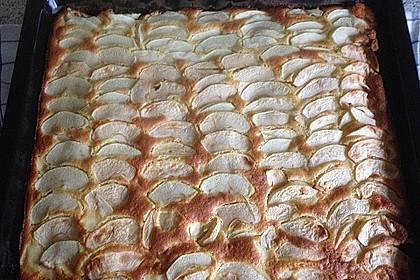 Apfelkuchen schnell und fein 167