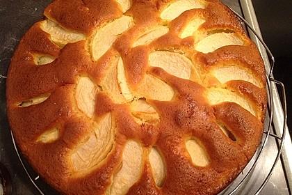 Apfelkuchen schnell und fein 36