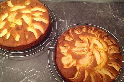 Apfelkuchen schnell und fein 57